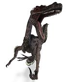 Dinosaur Velociraptor. 3D rendering with clipping path and shadow over white poster