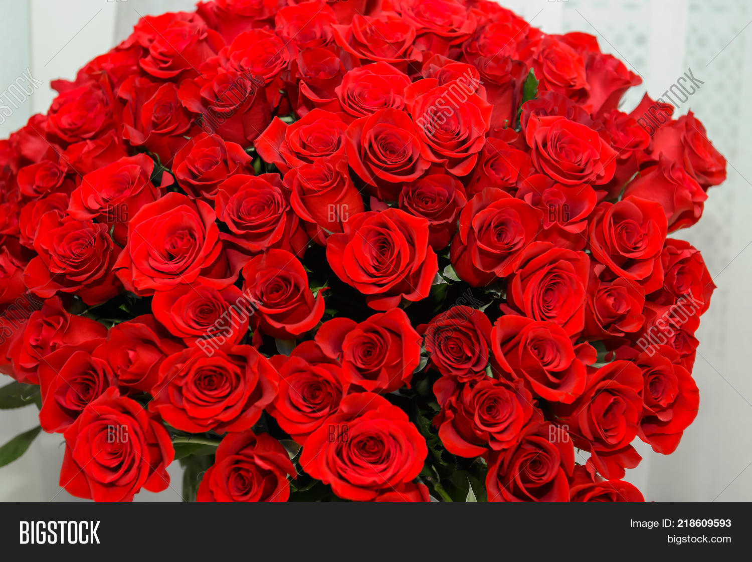 Background many red image photo free trial bigstock background many red roses scarlet luxury rose close noble holiday flowers for a gift izmirmasajfo
