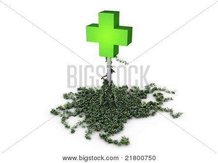 Ivy pharmacy