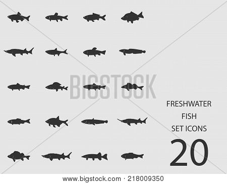 Freshwater fish set of flat icons. Simple vector illustration