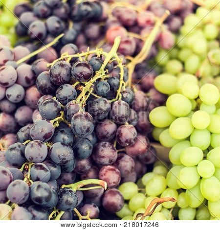 Organic assorted of ripe grapes on a local farmer market. Healthy local food market concept in vintage hipster style.