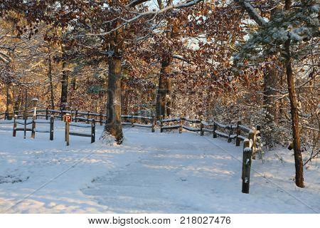 Snow scape park