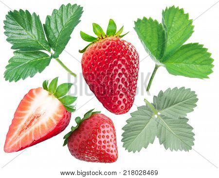 Collection of strawberries and strawberry leaves on white background.