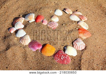heart symbol from sea shells on sand beach