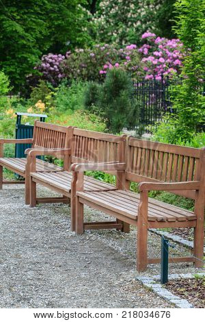 summer park and wooden benches
