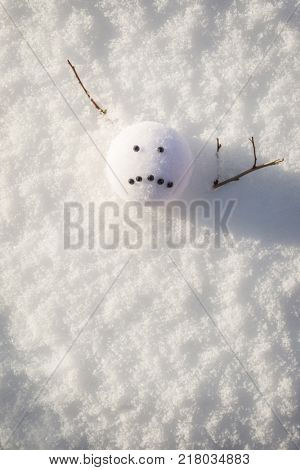 Head of melted snowman with sad face