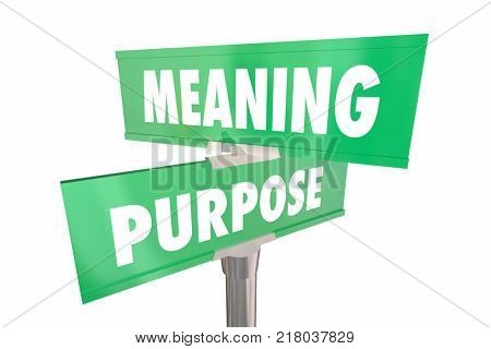 Meaning Purpose Road Street Signs Words 3d Illustration