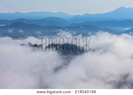 In the morning the cold weather is make floating fog on the mountain as a sea of mist slow floating fog blowing cover on the top of mountain look like as a sea of mist