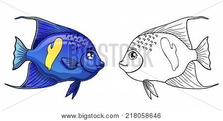 Cute sea aquarium blue arabian angel fish colorful and black contour line on a white background. Fish marine animal. Isolated cartoon vector illustration, page coloring book.