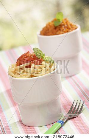 AL FRESCO ITALIAN RICE AND PASTA WITH TOMATO AND BASIL SAUCE