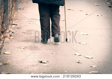 Old woman walk alone down the street with walking stick or cane view from back