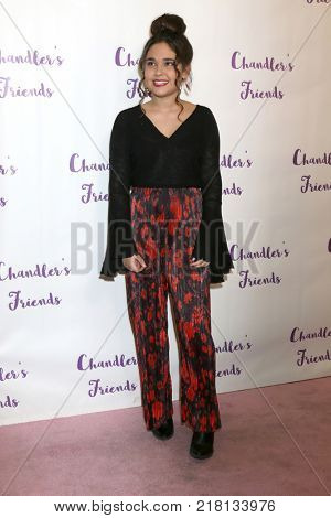 LOS ANGELES - DEC 10:  Molly Jackson at the Chandler's Friends Toy Drive & Wrapping Party  at Los Angeles Ballet Academy on December 10, 2017 in Los Angeles, CA