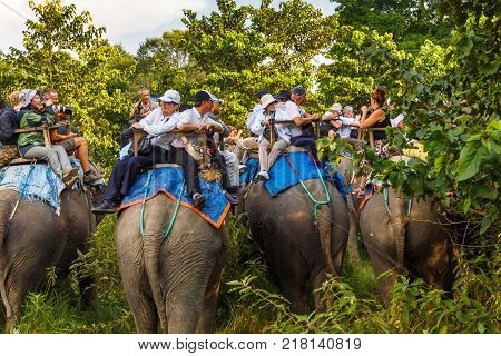CHITWAN NEPAL - September 27 2013: Tourists visiting the jungle on the backs of elephants. In the jungle is organized safari on elephants.
