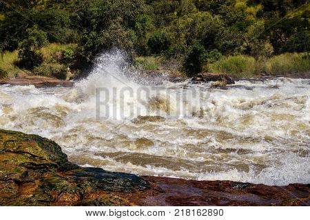 The power of the Murchison Falls, also known as Kabalega Falls, is a waterfall between Lake Kyoga and Lake Albert on the White Nile River in Uganda. Currently threaten by oil drilling at lake Albert