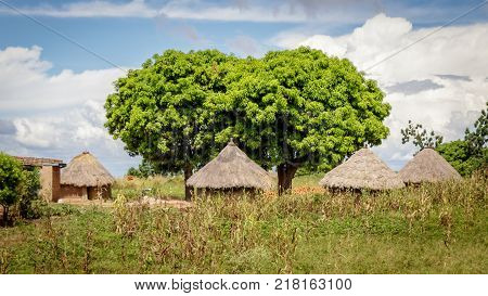 Typical Uganda huts. Most of the inhabitants live in thatched huts with mud and wattle walls. During the rainy season it is a very difficult task to keep huts stable and dry.