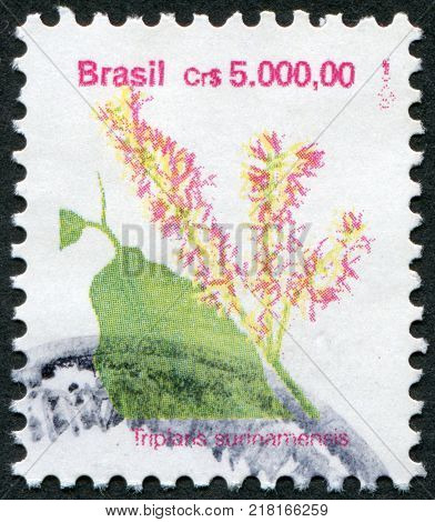 BRAZIL - CIRCA 1989: Postage stamps printed in Brazil shows a flower Triplaris surinamensis (Tachi) circa 1989