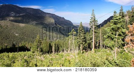 Panorama of forested mountains in the Mount Charleston area northwest of Las Vegas Nevada.