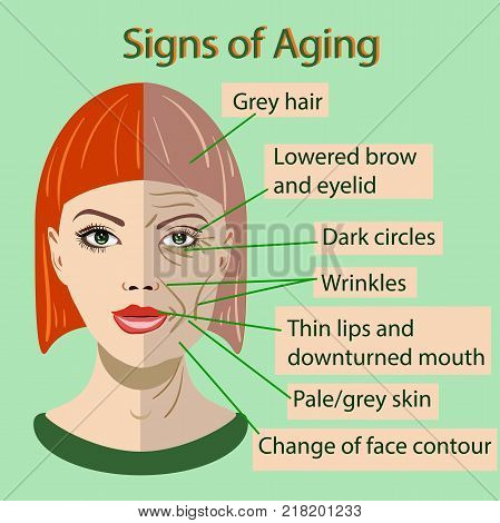 Vector sing of aging face with two types of skin, young and old isolated