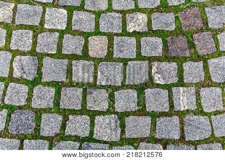 The texture of paving slabs made of natural gray stone of square shape and green moss between the slabs.
