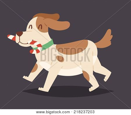 Christmas dog vector cute and candy cartoon puppy character illustration pet doggy Xmas celebrate pose illustration.