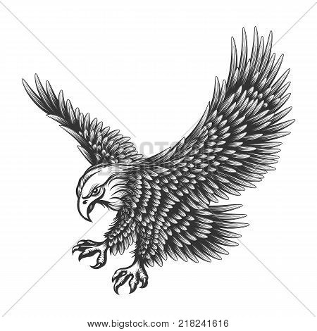 Flying Eagle Emblem Vector Photo Free Trial Bigstock