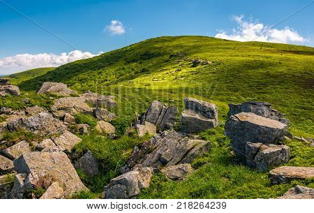 grassy with boulders in summer. beauty of the nature concept. location Polonina Runa in Carpathian mountains of Ukraine
