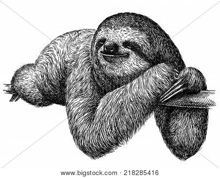 black and white engrave isolated sloth art