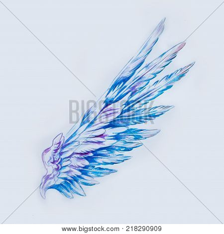 Sketch of a beautiful blue wing on white background.