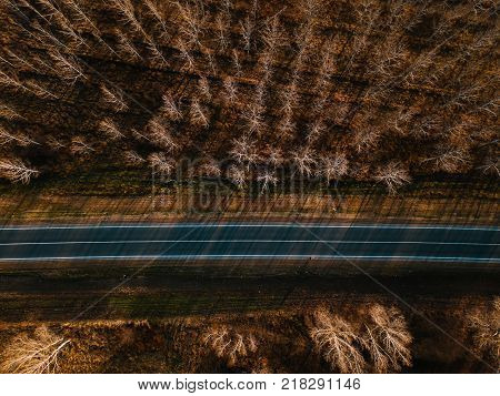Aerial view of brand new asphalt road through deciduous autumn forest woodland concept of journey and travel through nature in fall season
