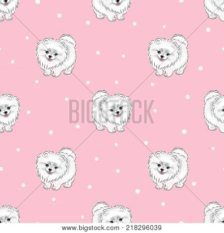 Seamless pattern with cute white pomeranian puppy on pink. Vector dogs background.