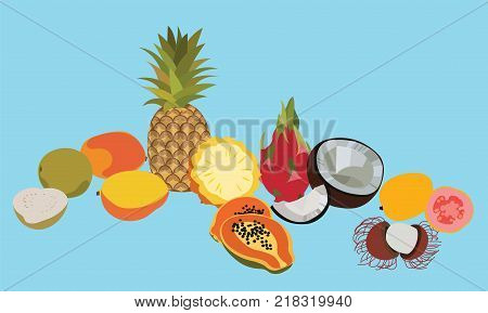 Tropic fruits isolated vector set. Fruits set. Isolated fruits. Different fruits. Isolated fruits. Tropical fruits illustration. Flat fruits set. Exotic fruits.Isolated fruits on blue background.Fruit
