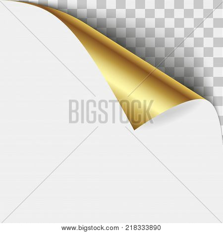 Gold page corner peel. Blank sheet of folded sticky paper note. Vector illustration sticker peel for advertising and promotional message isolated on white background.