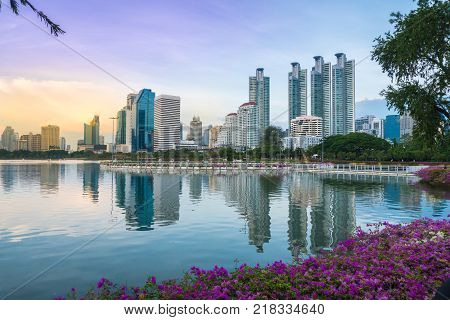 Magenta papers flowers and lake in public park and skyscraper in heart of bangkok thailand capital in twilight time. Copy space background