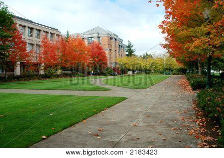 College-Campus im Herbst