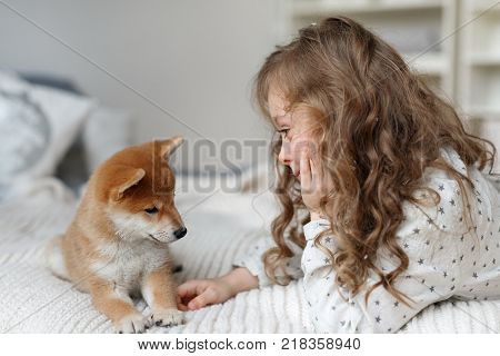 Small female kid has long curly hair plays with her favourite dog on bed, being glad to spend time with pet alone, have good relationships. Children and animals concept. Girl cares about pet.