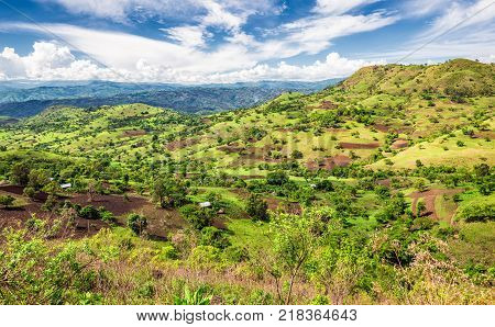 View of the Bonga forest reserve in southern Ethiopia