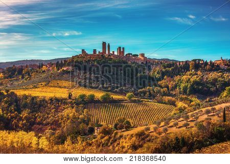 Tuscany Landscape Of Wave Field And Cypresses Trees - Tuscany Nature, Pienza, Italy, Europe