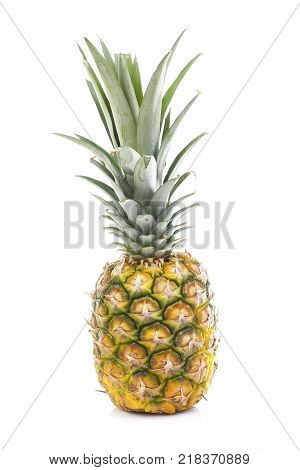 Pineapple in white studio background. Sweet delicious mellow tropical fruit. Full whole yellow pineapple. Fruit.