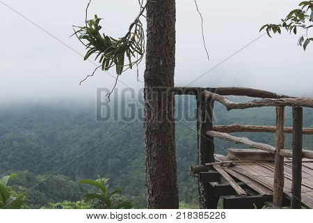 bamboo terrace with view of fog & cloud on mountain in morning. mist on hill. nature landscape