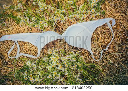 Brassiere and camomile flowers on natural hay background. Fashion underwear lingerie. Erotic sensuality romance concept.