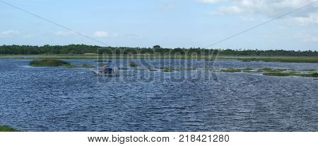 Wide shot of a portion of the Florida Everglades with airboat.