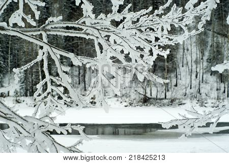 background texture: ice surface or wall covered with icy frost crystals