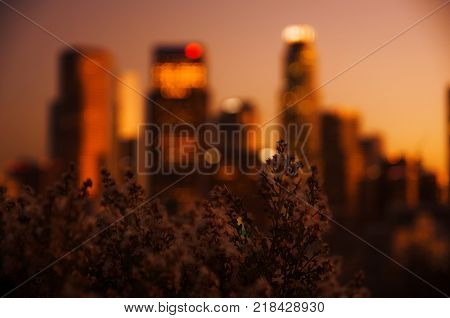 If you want to have nice view of the downtown of Los Angeles free, you can go to Vista Hermosa Natural Park and enjoy.