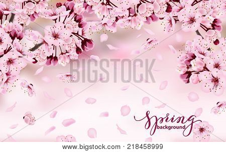 Beautiful horizontal banner with blossoming dark and light pink sakura flowers. Spring background. Template for invitation card, birthdaycard, banner, beauty, background Vector illustration.