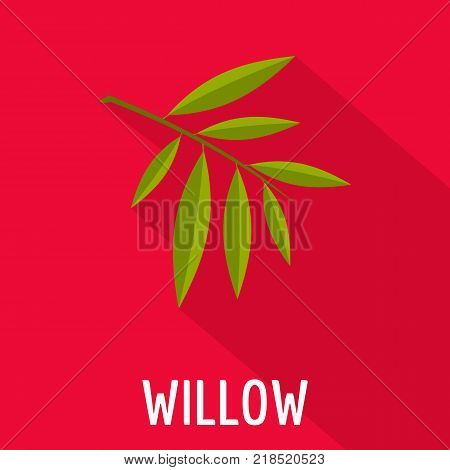 Willow leaf icon. Flat illustration of willow leaf vector icon for web