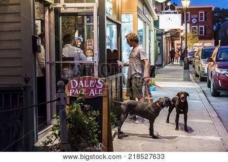 Bar Harbor, Usa - June 8, 2017: Person With Dogs Walking On Sidewalk Street By Main Road In Downtown