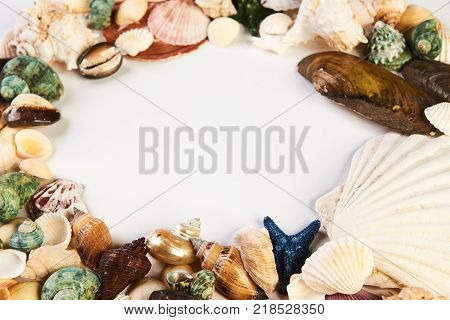 Sea shell frame top view. Ocean starfish, shellfish, seashell, scallops as summer frame isolated on white background with copy space for text, close-up. Holiday travel concept