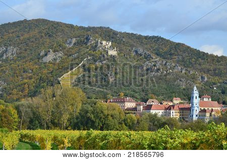 Autumn in the vineyard Lower Austria Austria