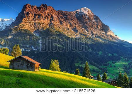 Spectacular Swiss alpine landscape with green fields and famous Eiger peak, Bernese Oberland, Switzerland, Europe