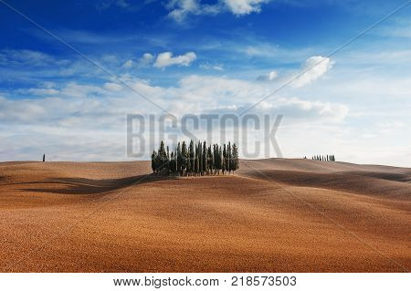 Rolling hills small cypress trees forest and blue sky with clouds in tuscan landscape countryside panoramic view in an autumn day - Tuscany Italy Europe
